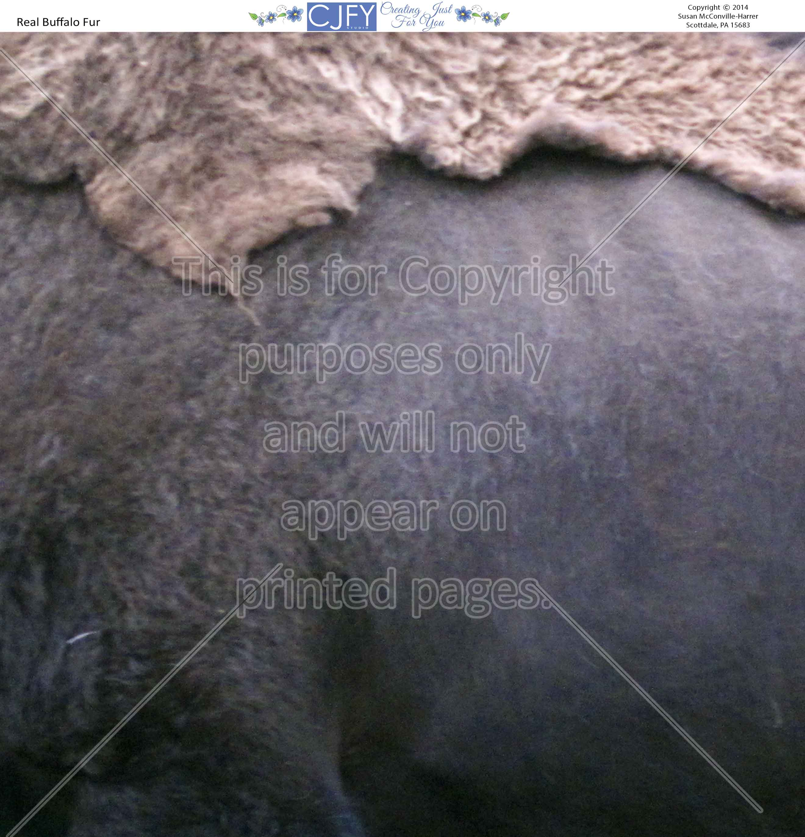 Scrapbook Paper, Animals,Buffalos
