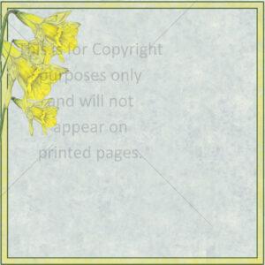 daffodil scrapbook paper