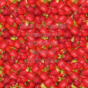 scrapbook paper of strawberries