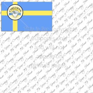 Sweden Family Reunion Scrapbook Paper