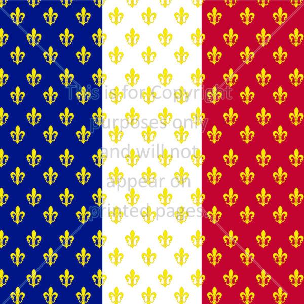 France Flag Flower