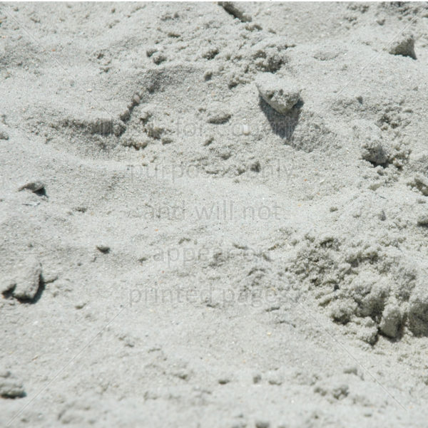 Myrtle Beach SC Scrapbook Paper