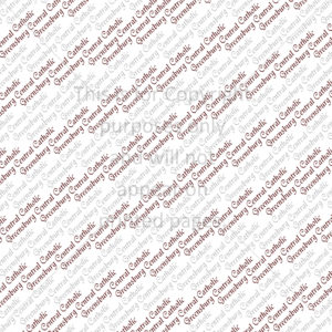 Greensburg Central Catholic Scrapbook Paper