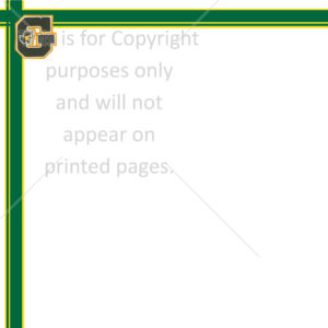 Geibel Scrapbook Paper