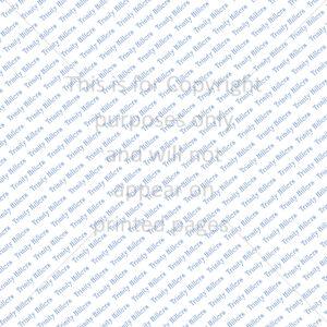 Trinity Hillers Scrapbook Paper