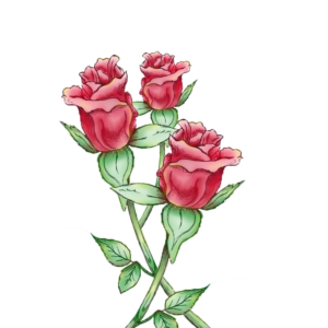 Painted Rose Bud