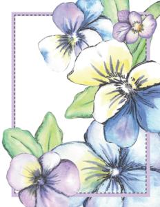 viola note cards